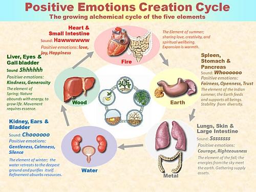 Nurturing Cycle of Emotions