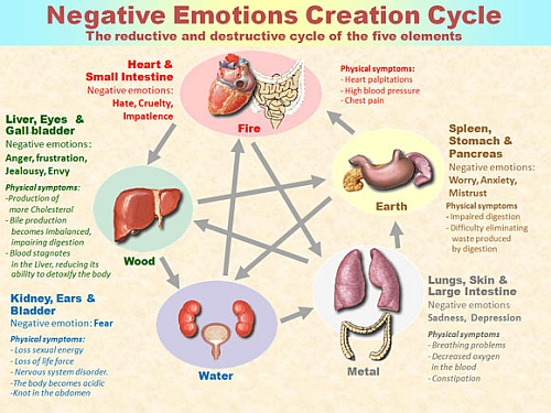 Desctructive Cycle of Emotions